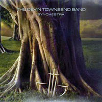Synchestra (The Devin Townsend Band)